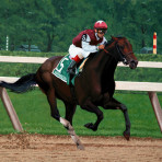 """Bernardini Winning 2006 Travers Stakes"""