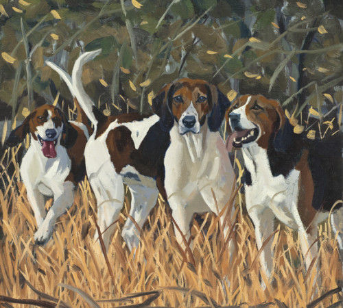 """Fox Hounds"""